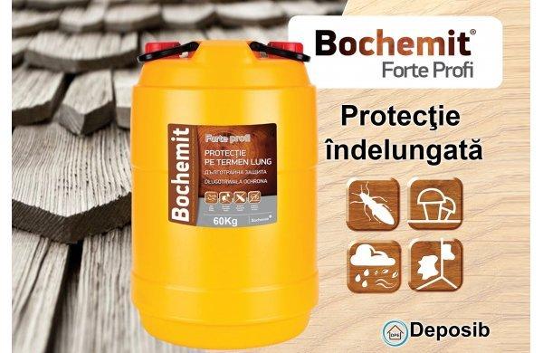 Bochemit Forte Profi  - tratarea pe termen lung a lemnului
