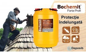 Tratare lemn acoperis Bochemit Forte Profi